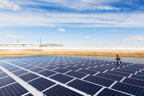The Latest Trends in Corporate Renewable Energy Procurement