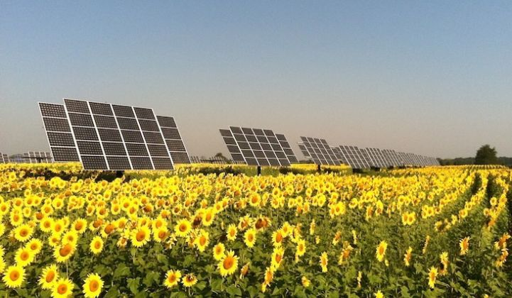 Guest Post: Shared Solar in California Coming to a Vote