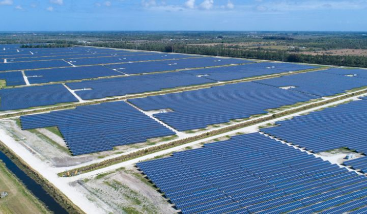 FPL has already built several solar farms with close to 80 megawatts in capacity, including Blue Cypress in Indian River County.