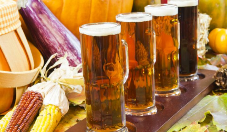 Highlights From Germany's Distributed Energy Oktoberfest