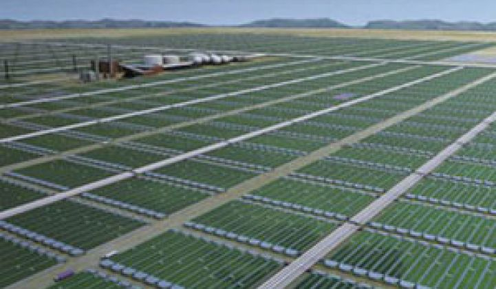 Solix: Another Me-Too Algae Company Raises $10.5M