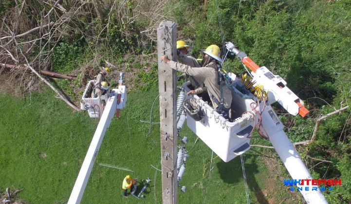 Whitefish Energy workers repair lines and towers in Puerto Rico as the company's contract comes under scrutiny.