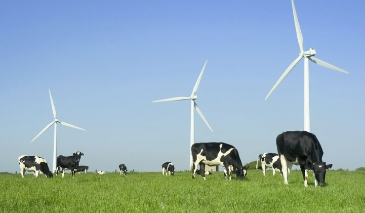 A New Wind Energy Opportunity for Corporate Buyers
