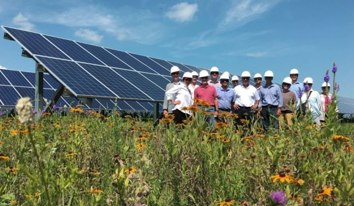 Solar gardens are finally blooming in Minnesota.