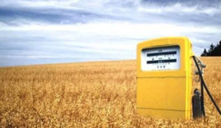 Are Biofuels Contributing to Higher Food Prices?