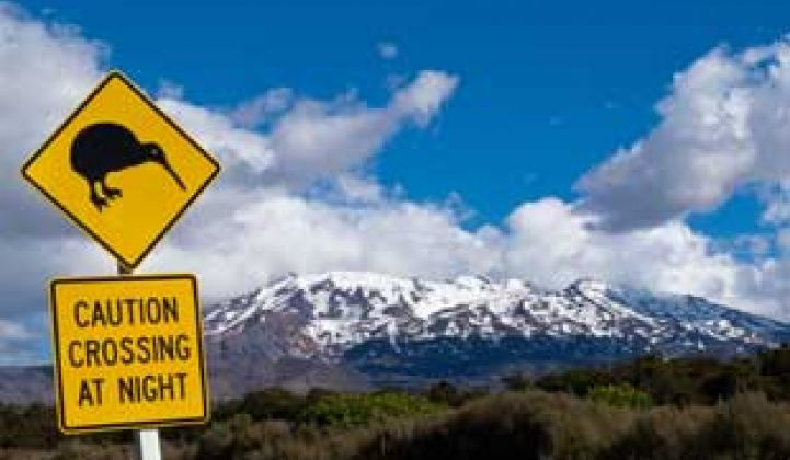 Silver Spring Beats Analyst Estimates, Goes Further Into New Zealand
