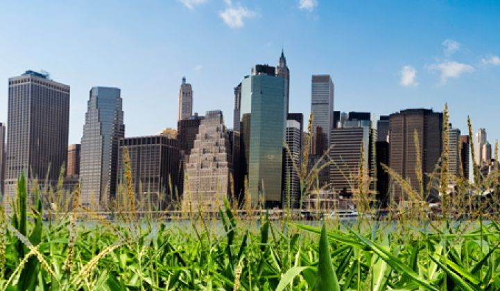 Can Agriculture Go Urban?
