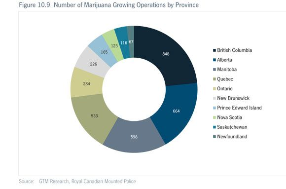 canadian marijuana grow ops