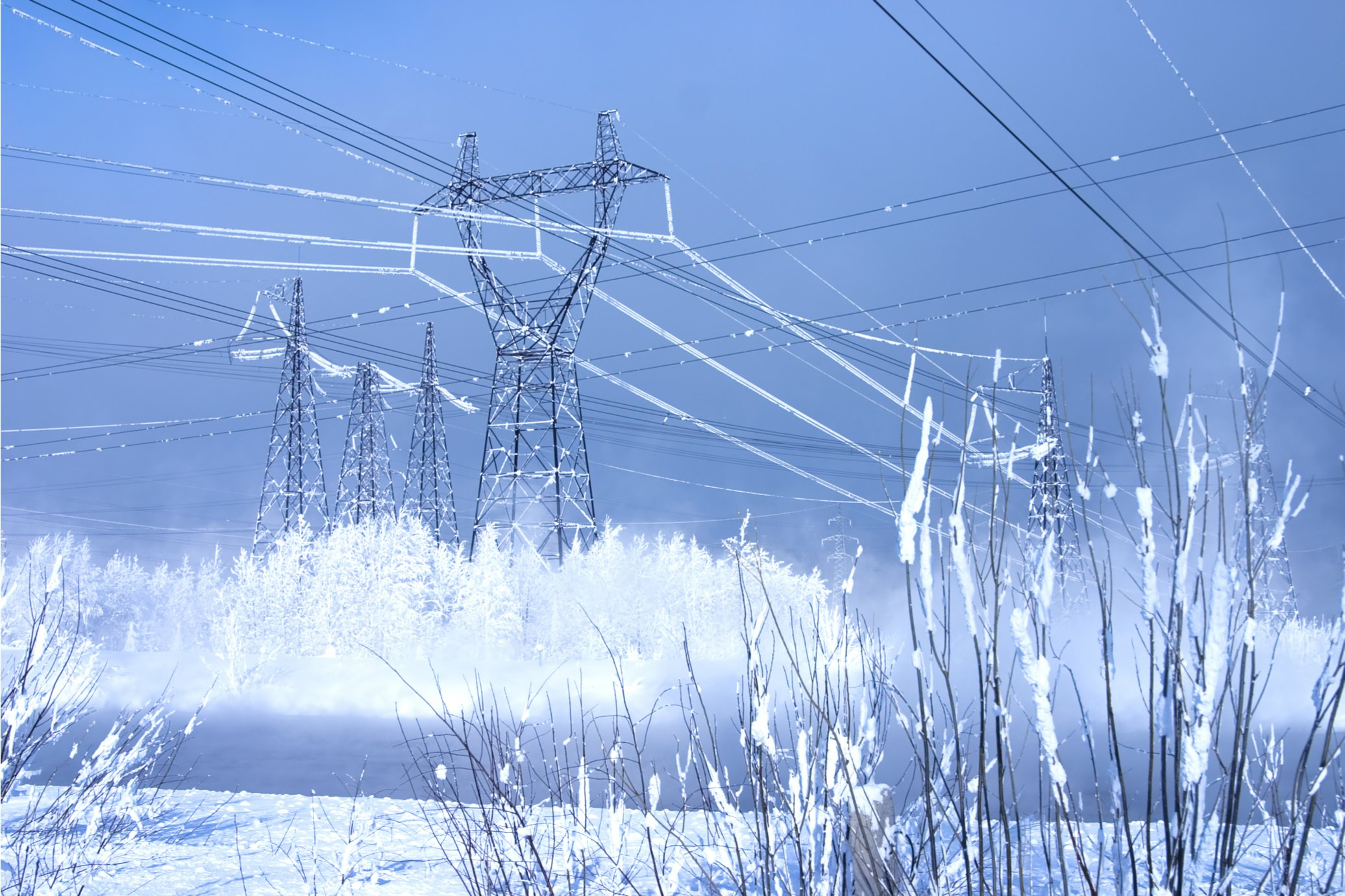 The Texas Polar Vortex Resurrects the Question of Fuel Diversity for the Decarbonized Grid